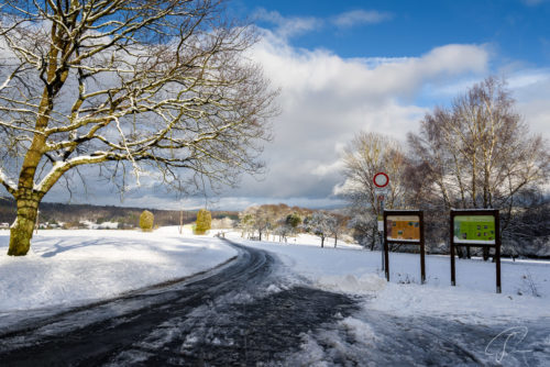 Weg in einer Schneelandschaft in Engenhahn Wildparlk